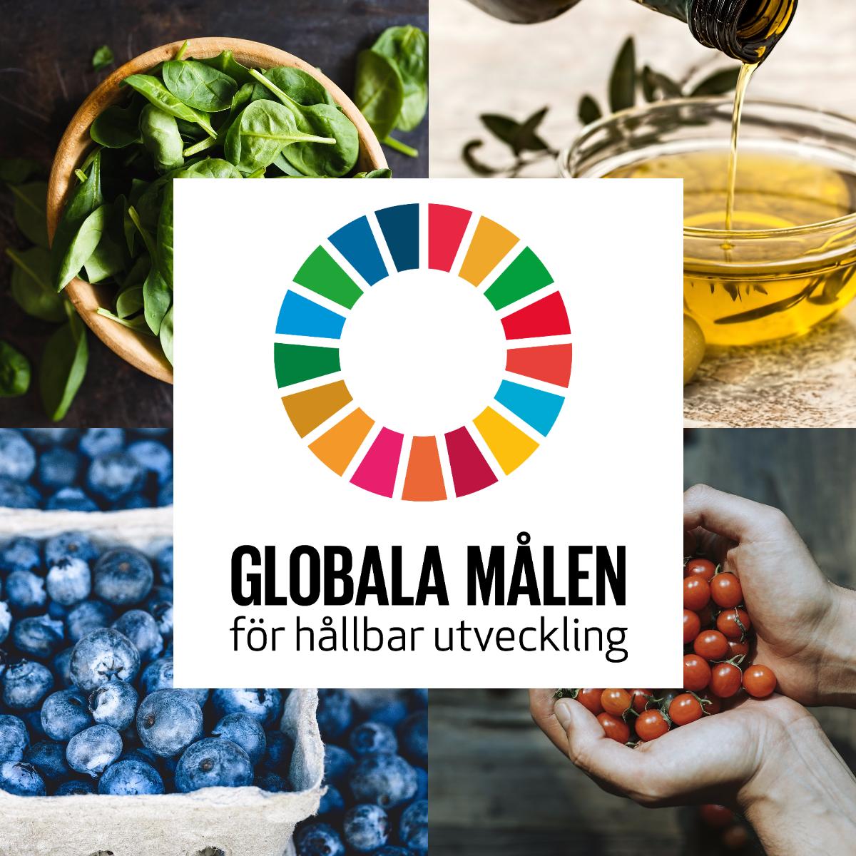 Meal Makers - Globala målen